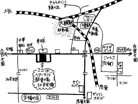 大網新地図2016